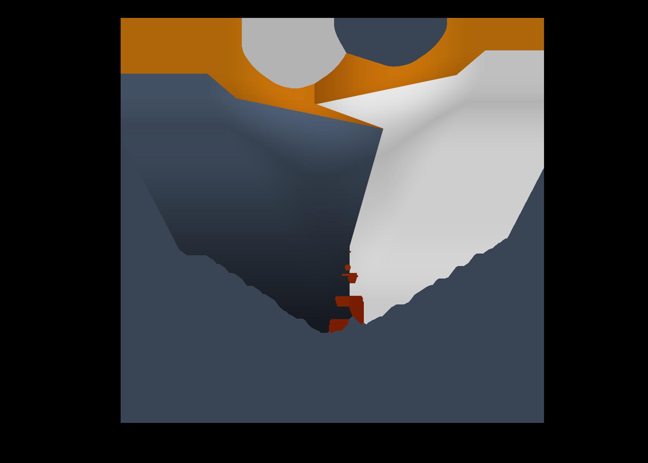 Self-Identification of Disability Status